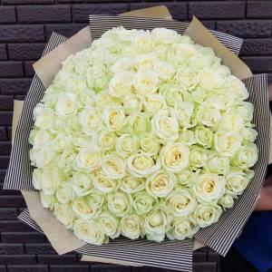 Букет 101 белая роза 70 см с упаковкой R1960