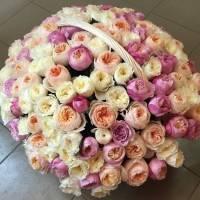 Корзина 101 нежная пионовидная роза с оформлением R932