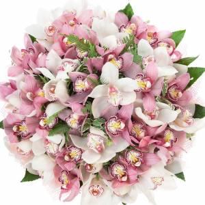 Букет 51 крупная орхидея в упаковке R126
